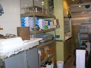 Basket undergoing treatment, many boxes of shipwreck artifacts desalinating, humidity chamber on top shelf, fume hood, yellow solvent cabinet on far side of fume hood, preservation pencil and various treatment supplies.