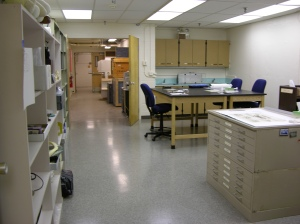 Conservation Lab AFTER