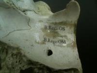 regalrez bone