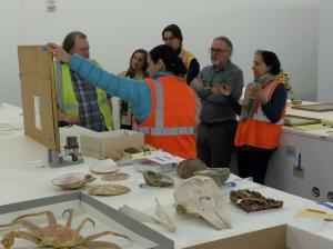 Paper conservator Karen Zukor came up in January to consult with us.  Here she is explaining the issues with an artwork.  L to R curator Steve Henrikson,exhibit curator Jackie Manning, back of my head, exhibit designer Aaron Elmore, exhibit coordinator Paul Gardinier, and Karen Zukor.
