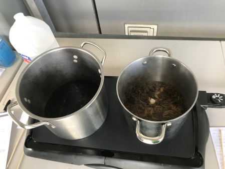 11 A cook