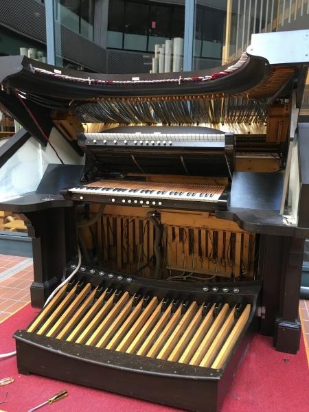 Organ opened